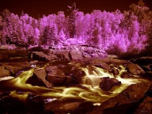 Cascades Conservation Area[stockpholio.com]-7877897220_4
