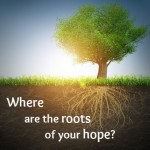 The Roots of Hope