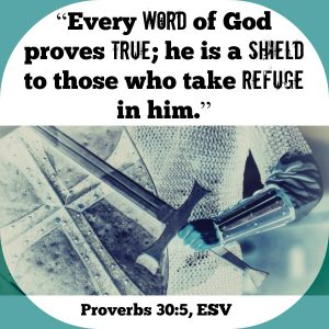 """""""Every word of God proves true; he is a shield to those who take refuge in him."""" (Proverbs 30:5, ESV) 
