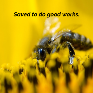 Saved to Do Good Works | KingdomNomics.com